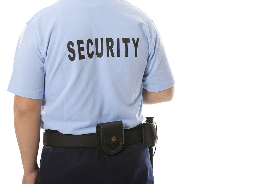 Image result for Security Enforcement Firm istock